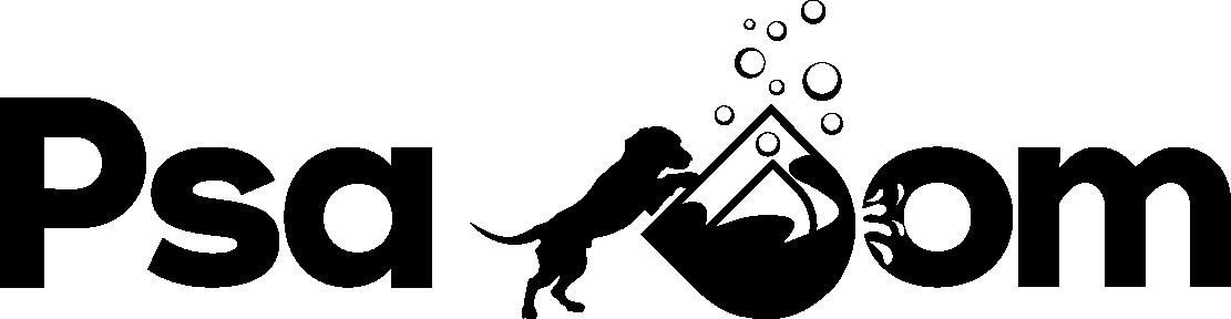 PsaDom Logo
